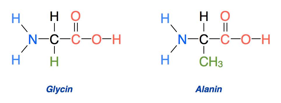 welche molekühle gibt es