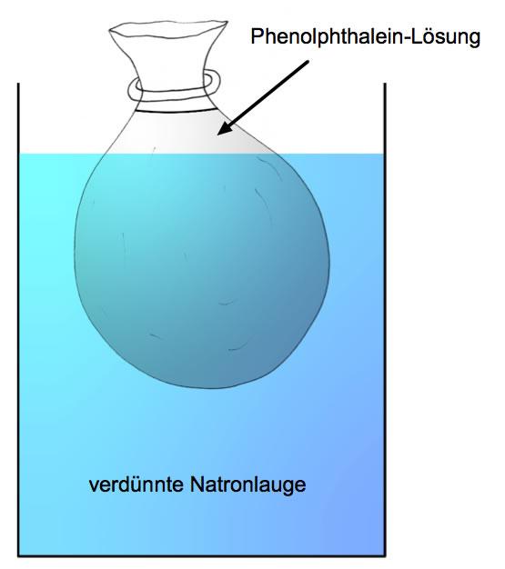 mikroskopische zeichnung zwiebelhaut