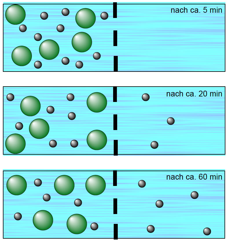 Diffusion durch eine semipermeable Membran