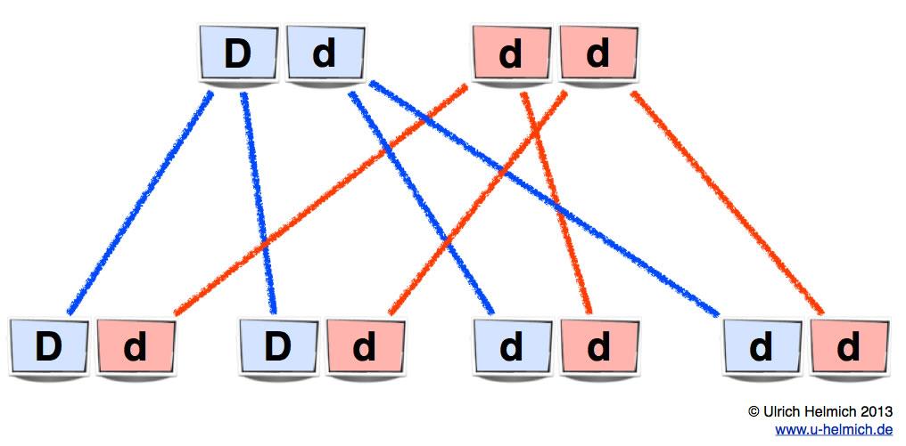 Rhesus System